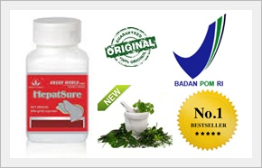 Obat Herbal Hepatitis Toksik